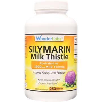 Silymarin Milk Thistle | Equivalent to 1000 mg Milk Thistle