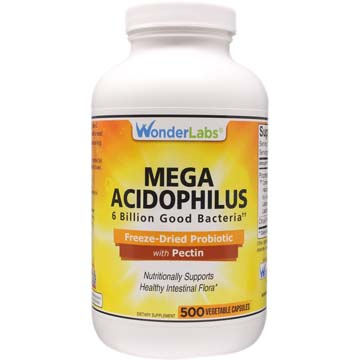 Mega Acidophilus Probiotic 6.0 Billion Organisms