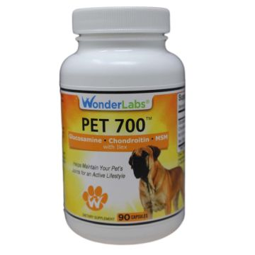 PET 700 | Top Seller for Pets Joints