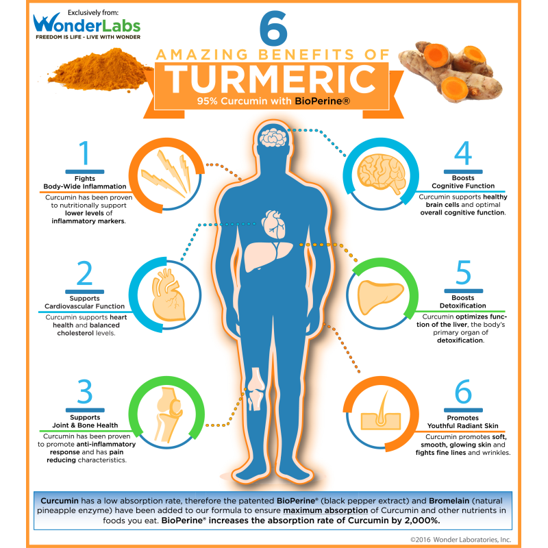 INFOGRAPHIC - 6 Benefits of Adding Turmeric Extract with Curcumin to Your Diet