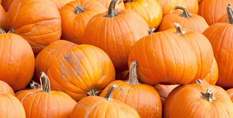 7 Health Benefits from the Pumpkin Patch