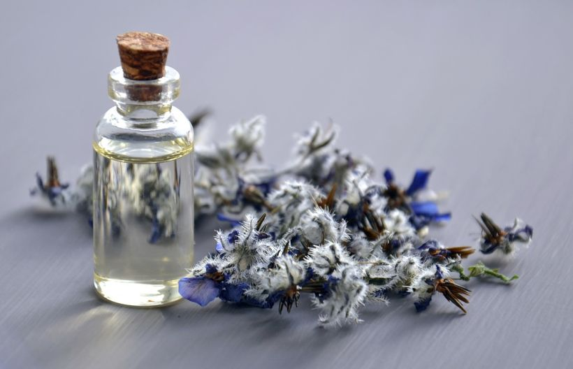 7 Reasons Why You Need Borage Oil In Your Life