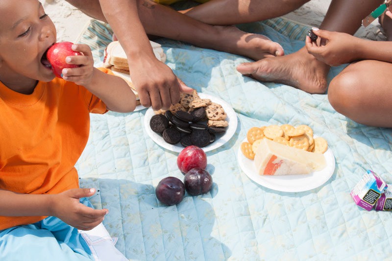 Food Prep Key for Healthy Picnics