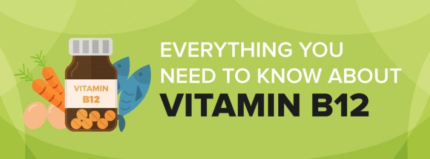 Fuel the Body with the Power of Vitamin B12