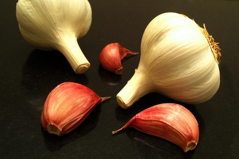 Garlic Brings Health Benefits To The Table
