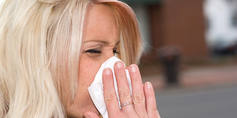 How to Fend off the Allergy Season Onslaught