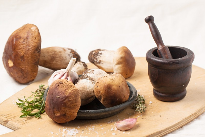 Invigorate Your Immune System: Make Room for Mushrooms