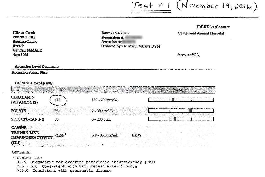 Lexi's EPI B12 Test #1 Results - November 14, 2016
