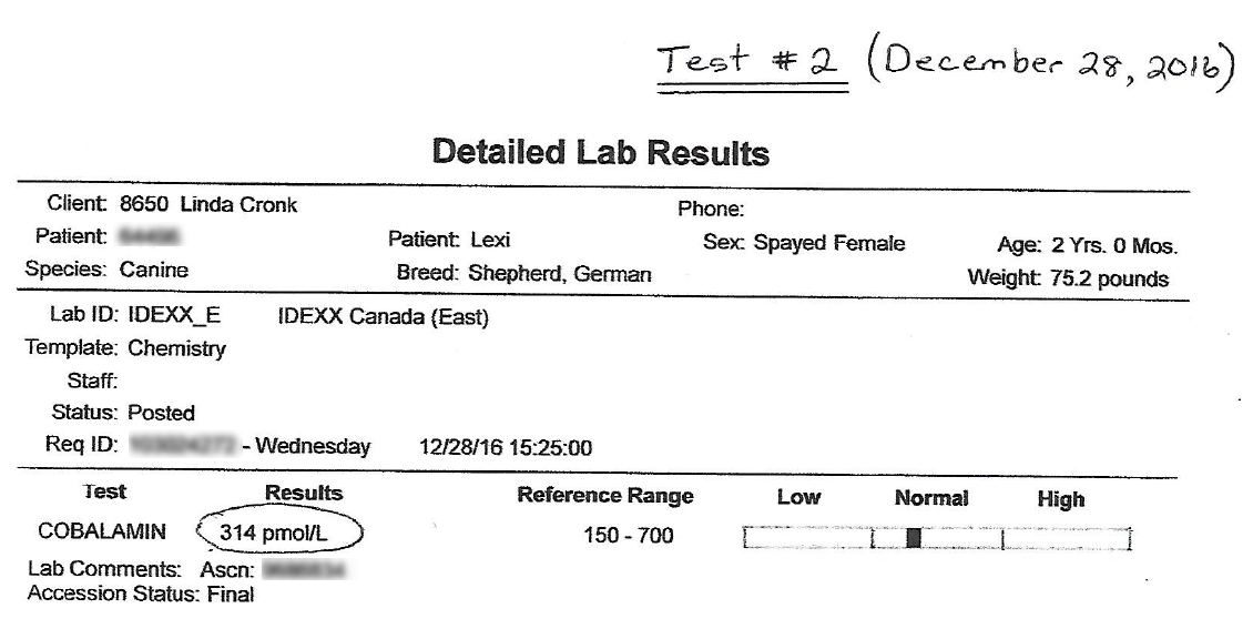 Lexi's EPI B12 Test #2 Results - December 28, 2016