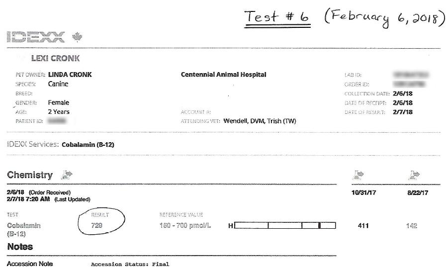 Lexi's EPI B12 Test #6 Results - February 6, 2018