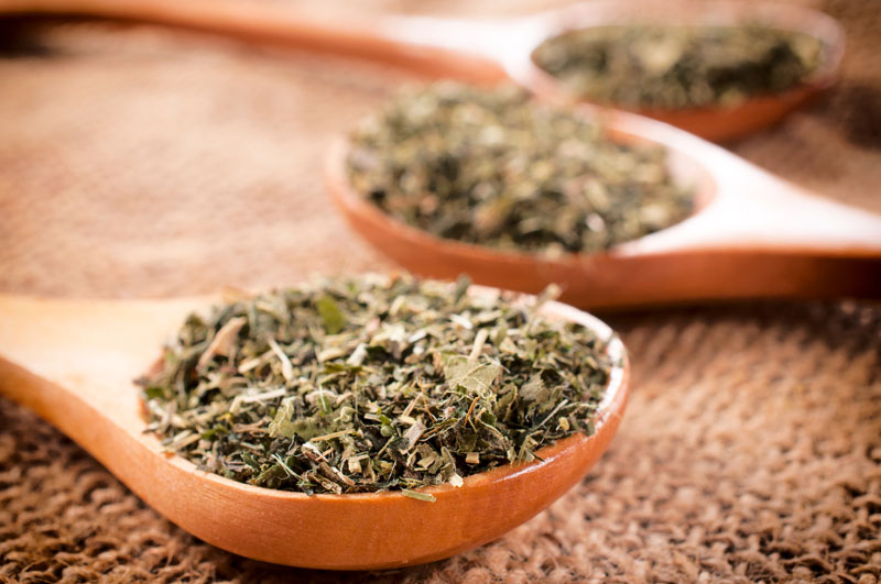 Oregano Oil: The Right Tonic for Many Health-Related Issues