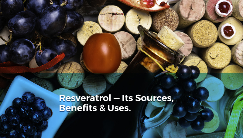 Resveratrol Its Sources Benefits And Uses Featured Product