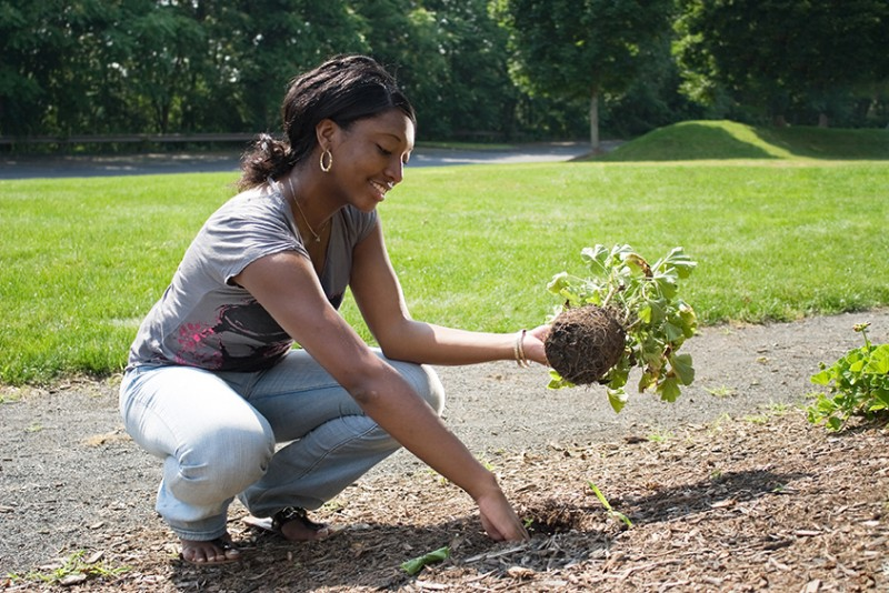 Tips on How Gardening Is Great for Health and Fitness