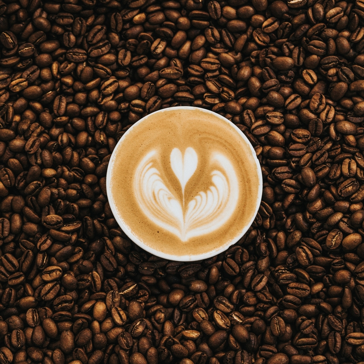 What are the Health Effects of Chlorogenic Acid in Coffee?