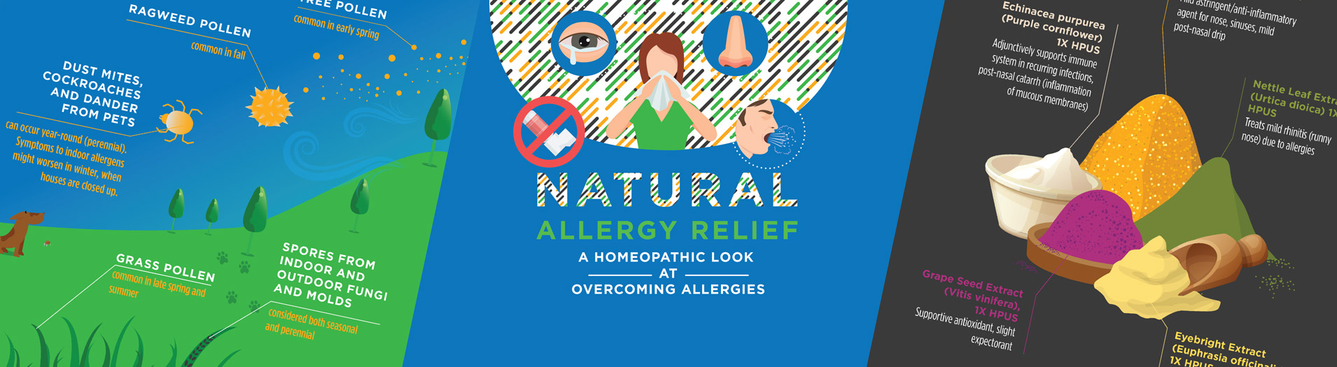 All Natural Allergy Relief with Phytofed